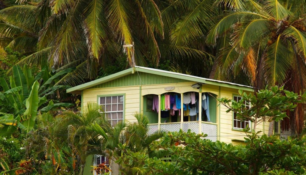 House set among the trees