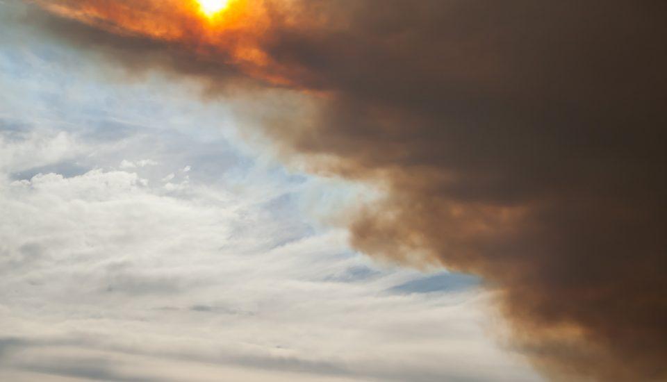 bushfire smoke asthma