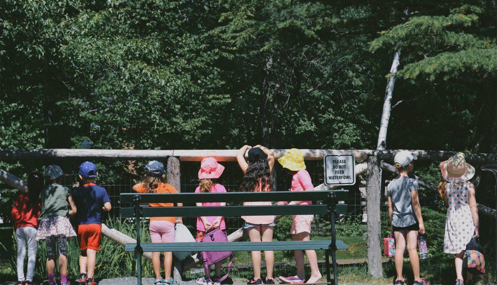 child field trip