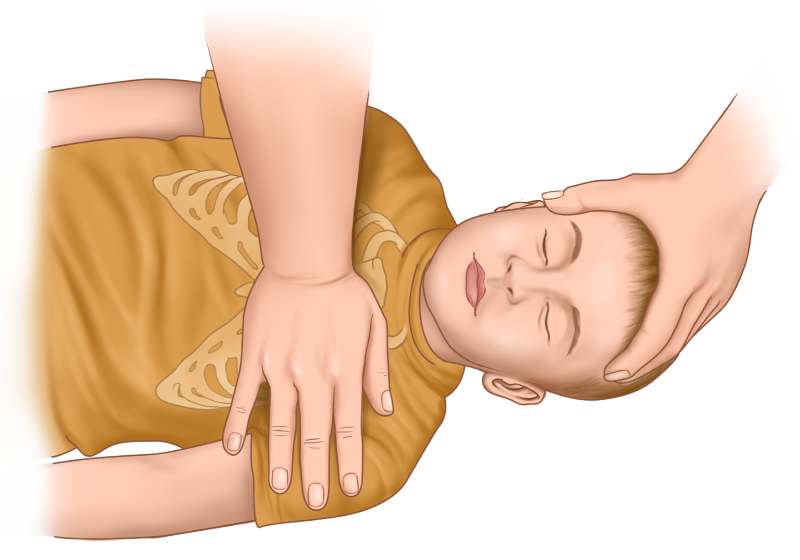 Child CPR guide - chest compressions hand placement